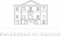 logo palazzona invertito